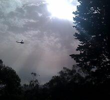 Chopper over Upper Ferntree Gully by SandyC