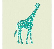 Geometric Giraffe Photographic Print