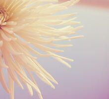 Sunlit Dance by Corin Jones