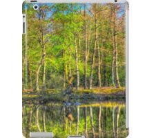 Reflections From The Pond iPad Case/Skin
