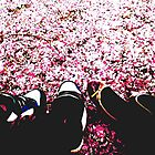Cherry Sea by JSLawrence
