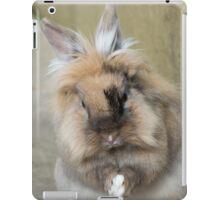 Rabbit praying iPad Case/Skin