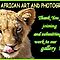 A NEW WELCOME BANNER FOR AFRICAN ART & PHOTOGRAPHY !