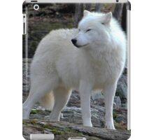 Arctic Wolf on the alert. iPad Case/Skin
