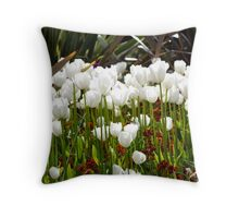 Lower Gardens, Bournemouth 5 Throw Pillow