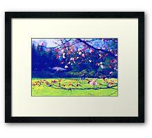 Sakura (1) Framed Print