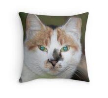 Glisten Throw Pillow
