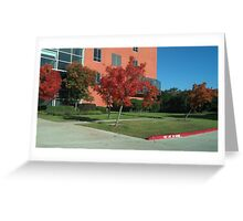 Third in Fall Greeting Card