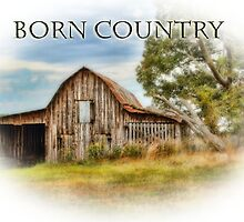 Born Country - Rural Barn Landscape - Americana by Barry  Jones