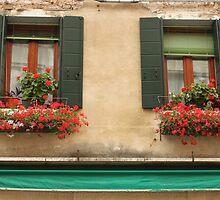 Italian Windows by Elena Skvortsova