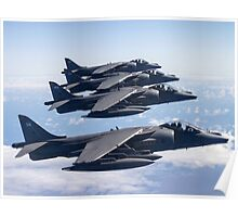 Harrier Quartet Poster