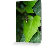 Hoverfly Inflight Greeting Card