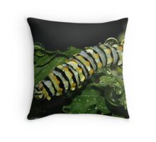 First of the Season Throw Pillow