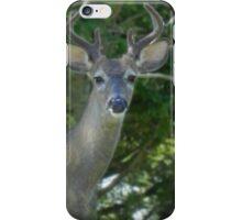 Big Daddy iPhone Case/Skin