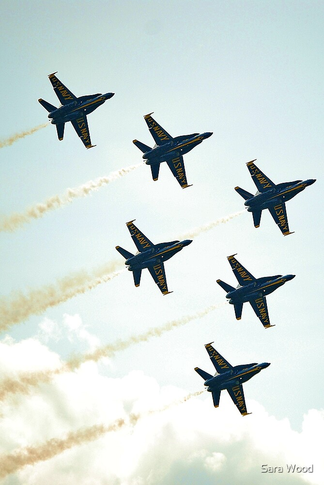 Angels Formation Flight by Sara Wood