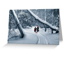 Hiking to the Gully Greeting Card