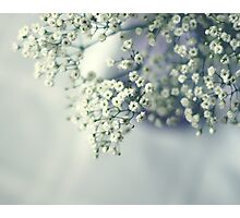 Whispery white Photographic Print