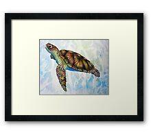 Sea Turtle Dream Framed Print