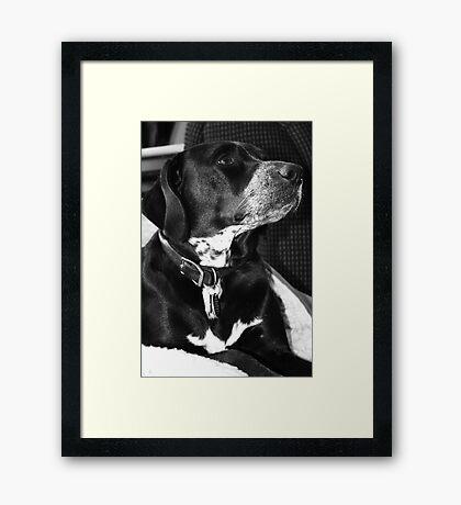 Teela Framed Print