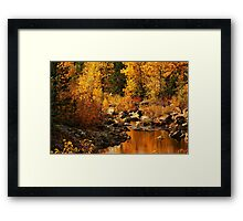 Sierra Gold Framed Print