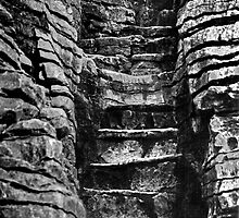 stone steps. punakaiki, aotearoa by tim buckley | bodhiimages