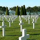 Normandy American Cemetery and Memorial by triciamary