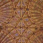 Vaulted Ceiling - Sherborne Abbey by lezvee
