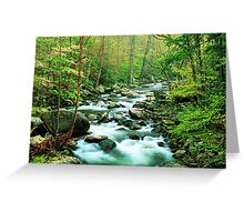 MIDDLE PRONG LITTLE RIVER,SPRING  Greeting Card