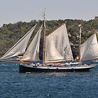 """""""Tecla"""", Tall Ships Departure, Manly, Australia 2013 by muz2142"""