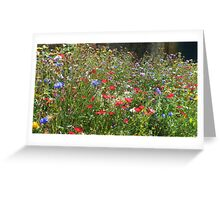 Wildflower Border  Greeting Card
