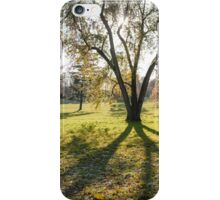 tree huge branches iPhone Case/Skin
