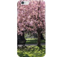 Under A Cherry Blossom Tree iPhone Case/Skin