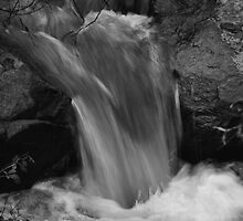 a tributary to the Yuba River's torrents by Lenny La Rue, IPA