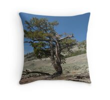 The twisted fir Throw Pillow