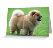 Funky Chow Chow Greeting Card