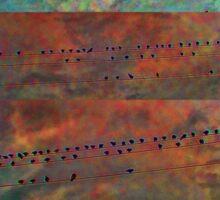 Birds on a Wire Conglom Sticker