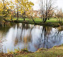 autumn park by Artur Mroszczyk