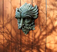 Green Man Fenced In Again by ys-eye
