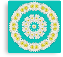 Wreath of Daisies on turquoise background Canvas Print
