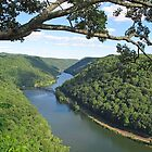 New River Gorge by Jack Ryan