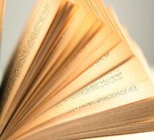 Flipping Pages by Colleen Farrell