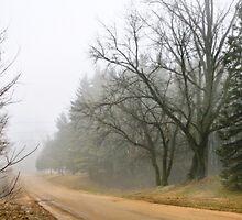 Misty by Nadya Johnson