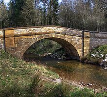 Hawnby Bridge - North Yorkshire by Trevor Kersley