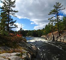 Rushing River by Debbie Oppermann