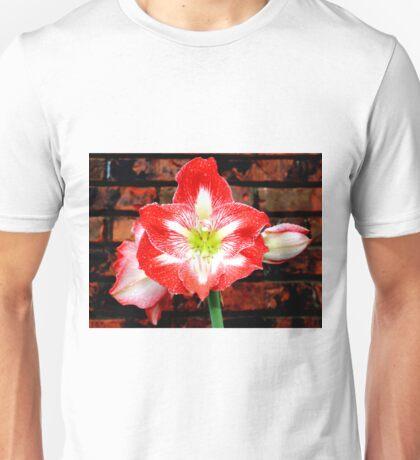 Amaryllis Allure Unisex T-Shirt