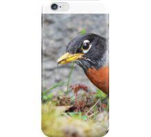 Peekaboo Robin iPhone Case/Skin