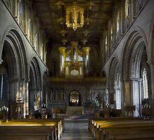 St Davids Cathedral  by lightmonger