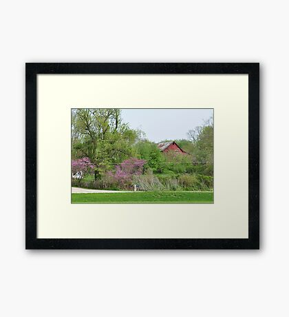 Colorful farm scene Framed Print