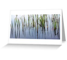 Life In The Shallows Greeting Card