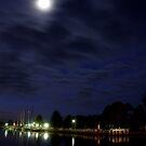 Moonlit Fairy by Paul Moore